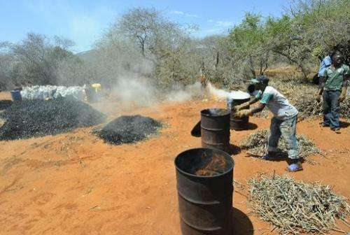 A farmer is seen making charcoal from twigs pruned from local forest during a controlled charcoal-making excercise at Maungu, a