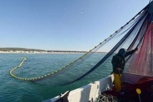 A fisherman brings up the nets from the water off the coast of the Mediterranean village of Gruissan, France on May 5, 2014