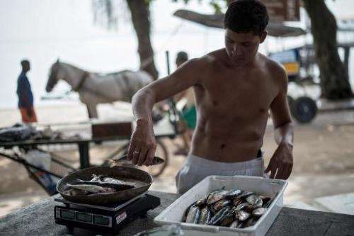 A fisherman weighs fish in Paqueta Island, located at Guanabara bay in Rio de Janeiro, Brazil, on November 5, 2014