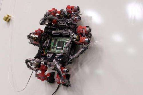 A handout photo released on January 2, 2013 by the European Space Agency shows the six-legged Abigaille climbing robot, which is