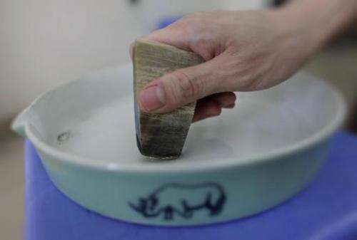 A man shows how to use the ceramic grinding plate with a piece of rhino horn in Hanoi, on April 24, 2012