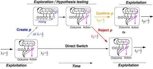A model of human reasoning