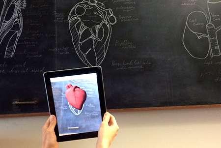 Analysing animal anatomy using augmented reality