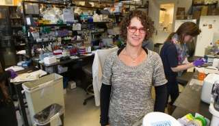 An enzyme that fixes broken DNA sometimes destroys it instead, researchers find