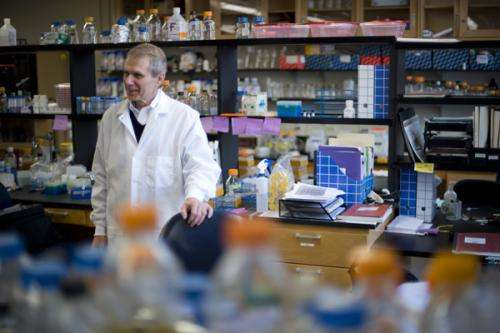 A new path to curing chronic Lyme disease