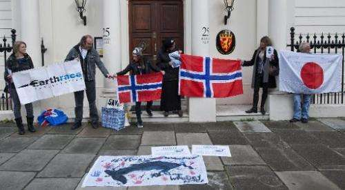 Anti-whaling protestors demonstrate outside the Norwegian embassy in central London on November 8, 2013