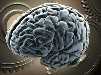 Areas of the brain process read and heard language differently