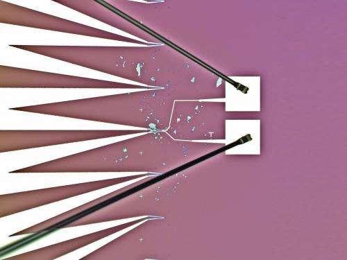 Atomically thin solar cells