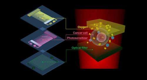 Biochips for better cancer therapy