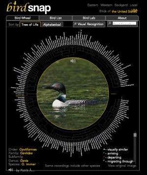 Bird watching in the 21st century