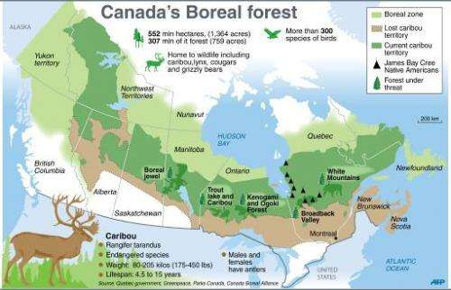 Native Trappers Defend Canada Forests From Logging