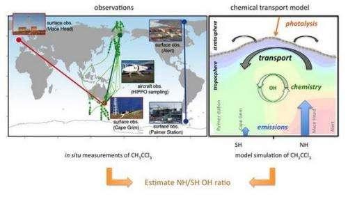 Observational evidence for interhemispheric hydroxyl parity
