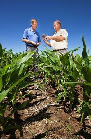 Carbon Sequestration Not So Simple in Biomass Crop Production