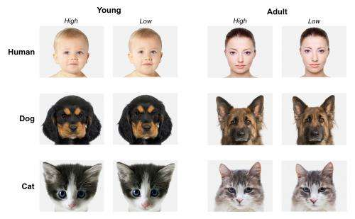 Children as young as three recognise 'cuteness' in faces of people and animals