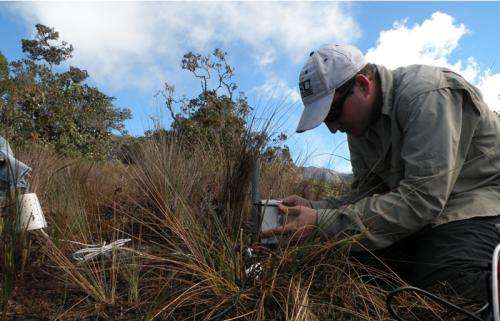 Cloud forests struggle to keep pace with climate change