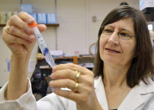 Common household chemicals decrease reproduction in mice, Virginia Tech study finds