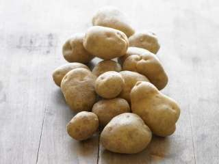 Controlling obesity with potato extract