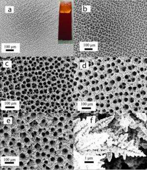 Copper foam turns carbon dioxide into useful chemicals
