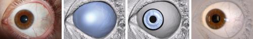 Disney Research technique captures unique eye traits to produce more realistic faces