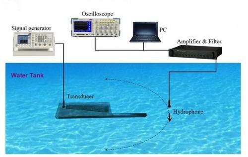 dolphin sonar 1