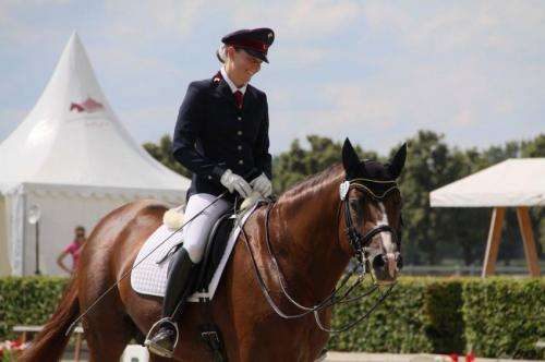 Do women and men ride differently? If so, horses cannot tell the difference