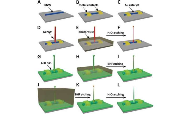 The twain finally meet: Nanowires and nanotubes combined to form intracellular bioelectronic probes