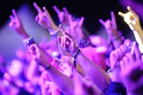Fans attend a rock concert on June 22, 2013 in Clisson, western France
