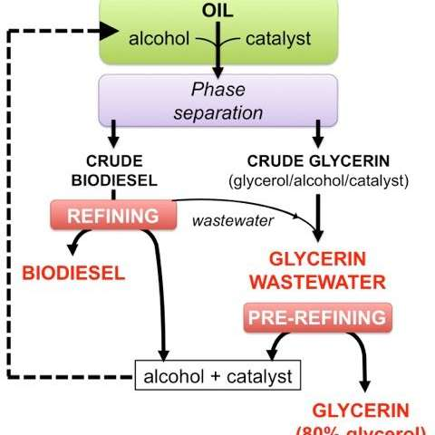 New, fossil-fuel-free process makes biodiesel sustainable