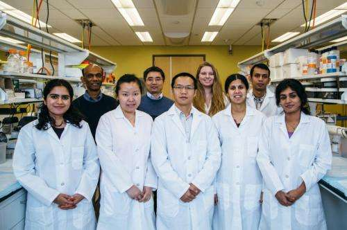 Findings give hope to plant extract as possible lupus treatment