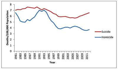 Firearm violence trends in the 21st century