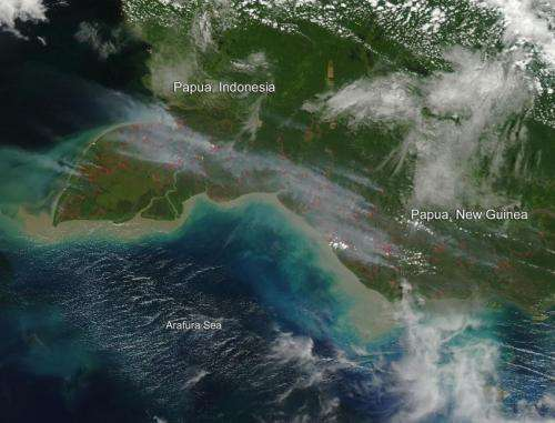Fires in Papua, Indonesia and New Guinea