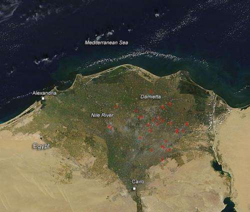 Fires in the Egypt River Delta