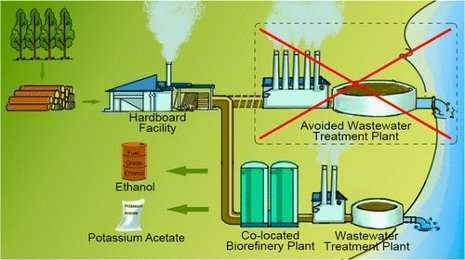 First commercial quantities of cellulosic ethanol from woody biomass marketed