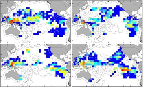 GPS traffic maps for leatherback turtles show hotspots to prevent accidental fishing deaths