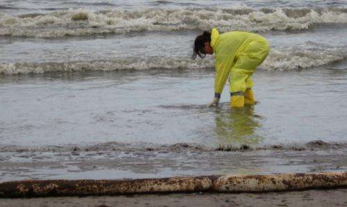 How beach microbes responded to the Deepwater Horizon oil spill
