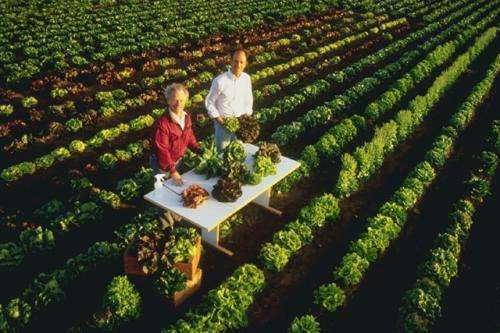 How can I wash all the pesticides off my food?