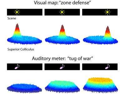 How vision captures sound now somewhat uncertain
