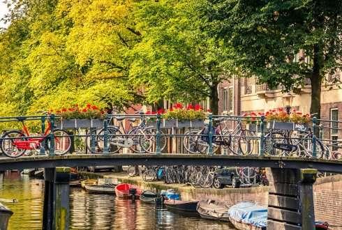 Imaginative ideas for a 'greenlight district' in Amsterdam