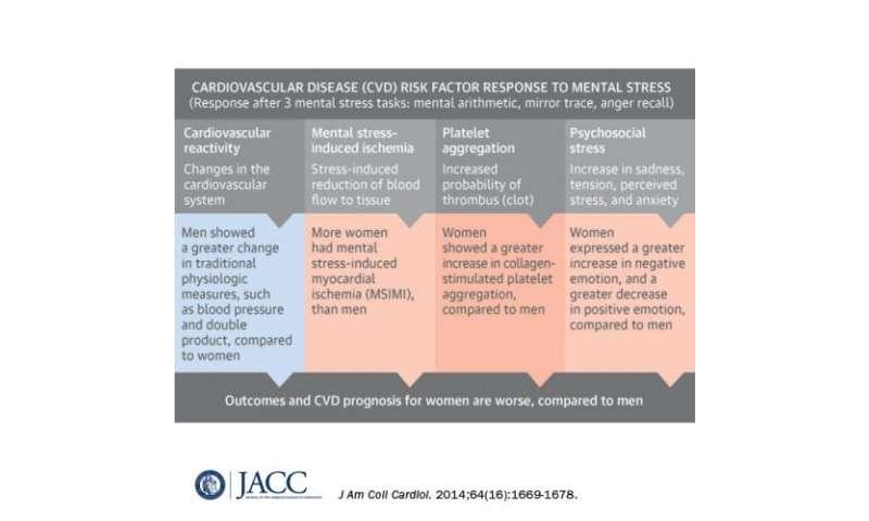 Impact of mental stress on heart varies between men, women