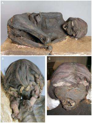Impact on mummy skull suggests murder