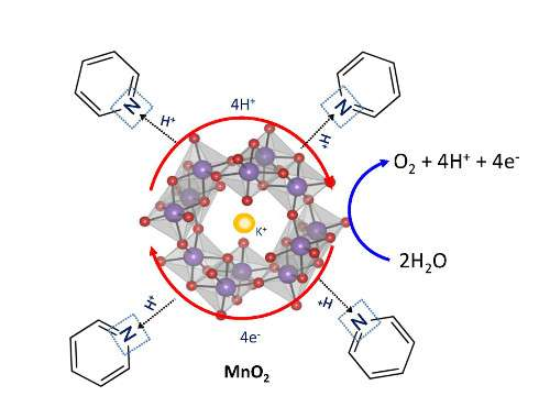 Insights from nature for more efficient water splitting