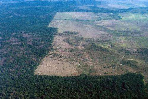 In this file aerial photo, deforestation area is clearly visible in Para state, northern Brazil, on August 9, 2013