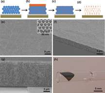 'Inverse opal' structure improves thin-film solar cells