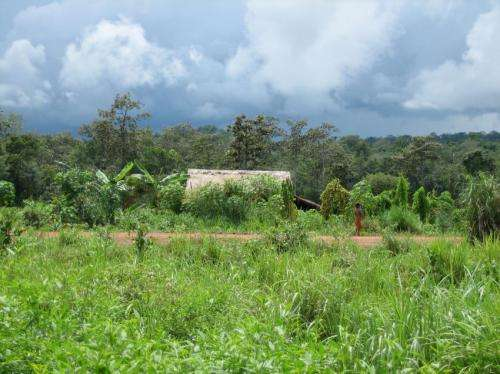 Cause of malaria drug resistance in SE Asia identified
