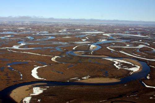 Sunlight, not microbes, key to CO2 in Arctic