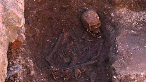 King Richard III -- case closed after 529 years