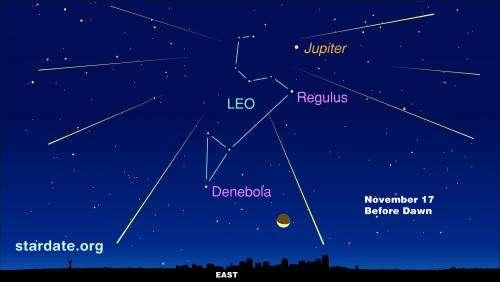 Leonid meteor shower best views before dawn November 17, 2014
