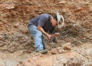 Lunadong fossils support theory of earlier dispersal of modern man