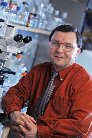 Lung and bladder cancers have common cell-cycle biomarkers