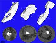 Mapping atherosclerotic arteries: Combined approach developed
